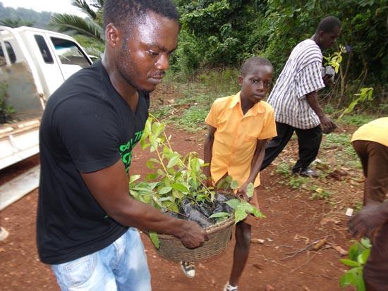 2014-Squeaker-Frog-transporting-seedlings