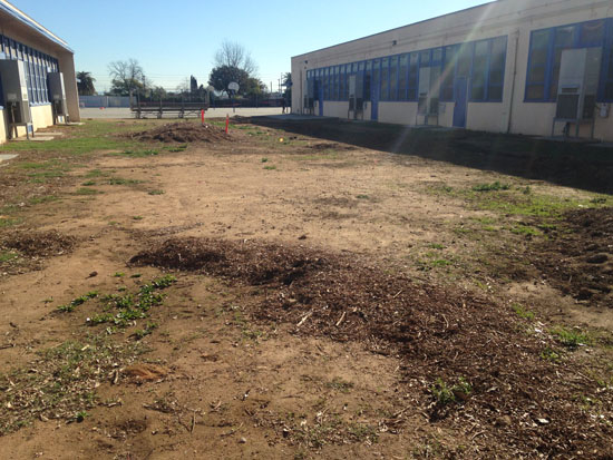 garvey school wetland construction