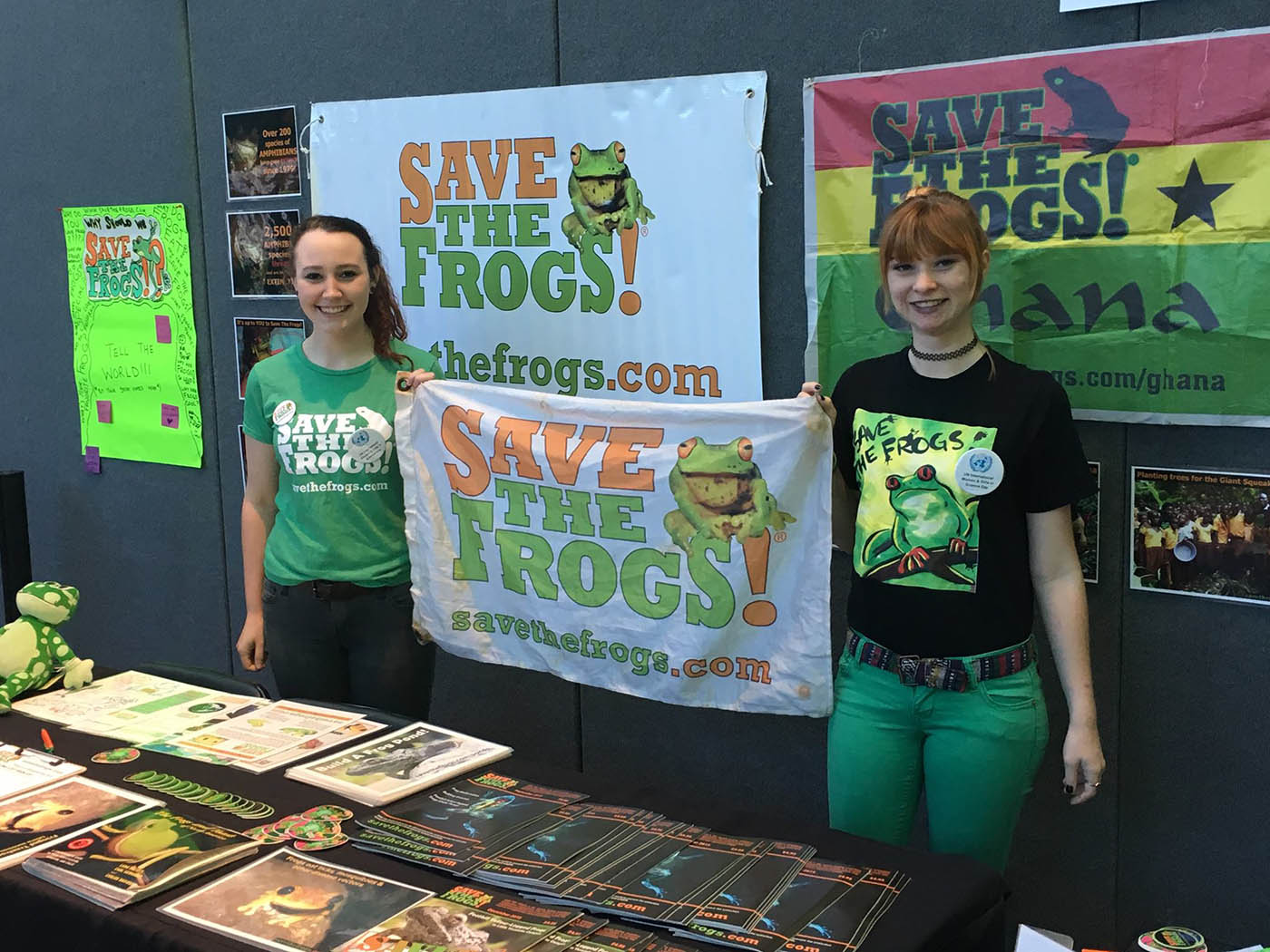 Save The Frogs Table - Florida Museum of Natural History