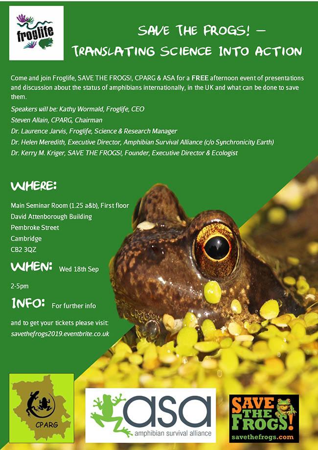 Cambridge United Kingdom  UK Frogs