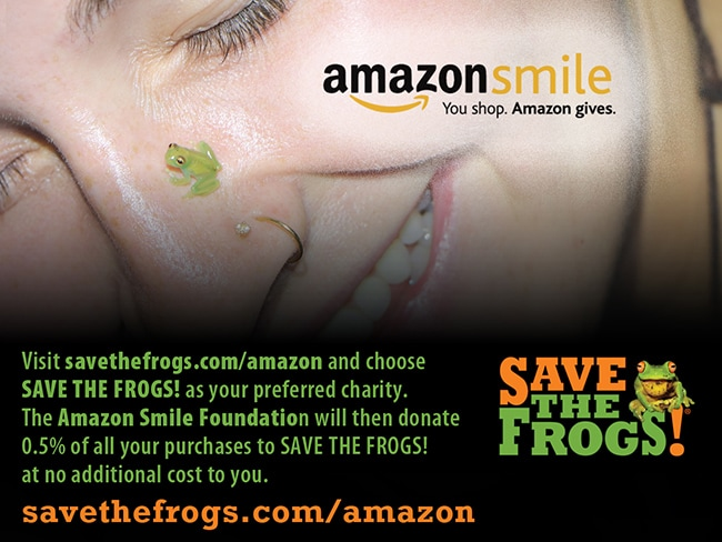 Amazon Smile Save The Frogs