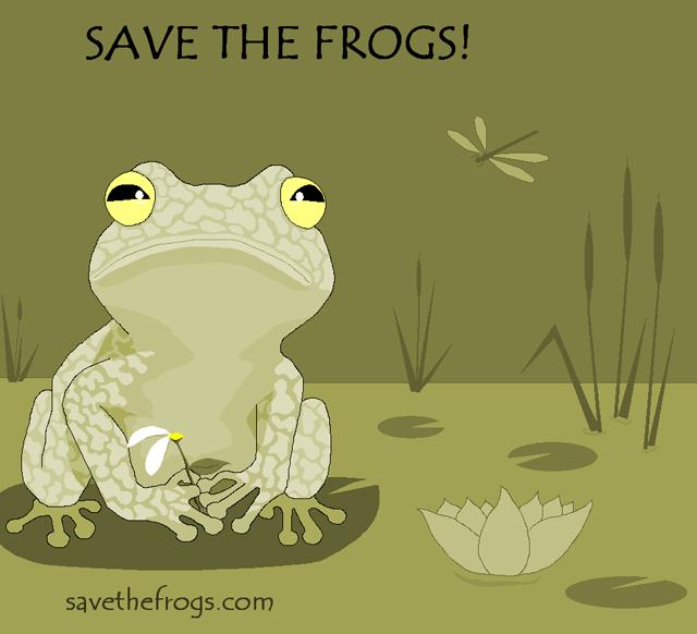 Barbara Janicelli Frog Art