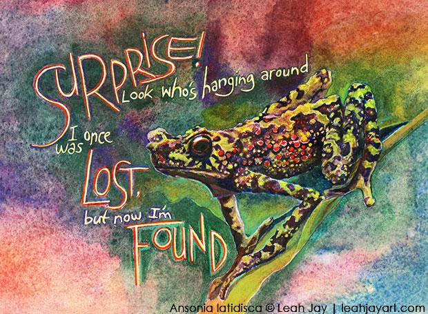 Bornean Rainbow Frog Art Leah Jay