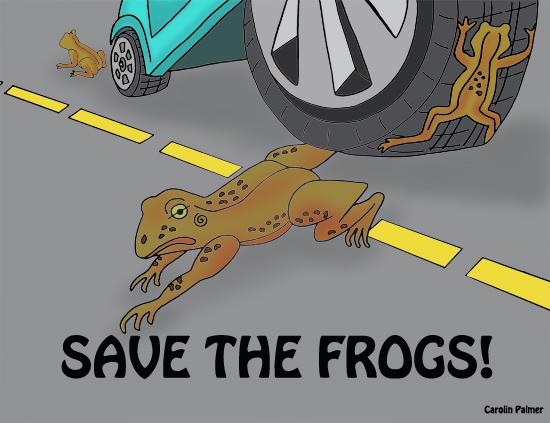 Roadkill amphibians