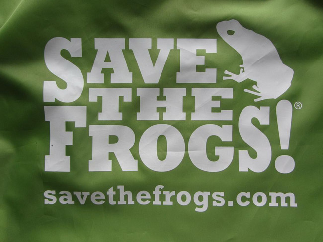 save the frogs green