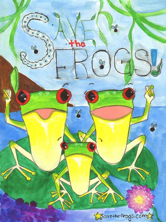 Frog Art by Clara Kim
