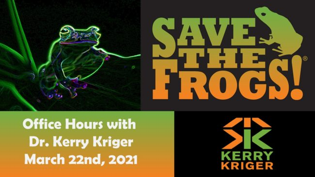 Save The Frogs Office Hours
