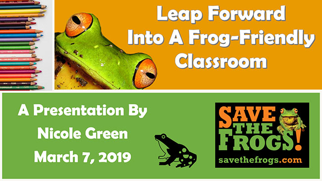 Leap Into A Frog-Friendly Classroom