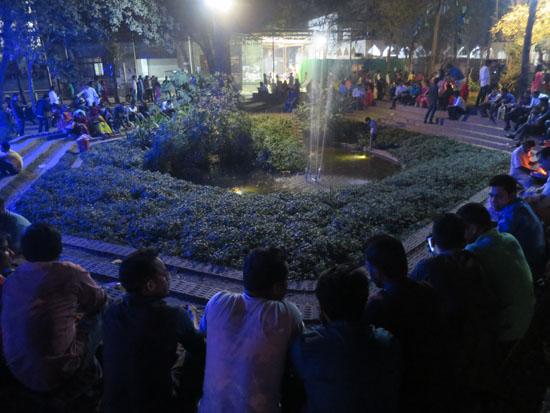 Dhaka University Toad Pond