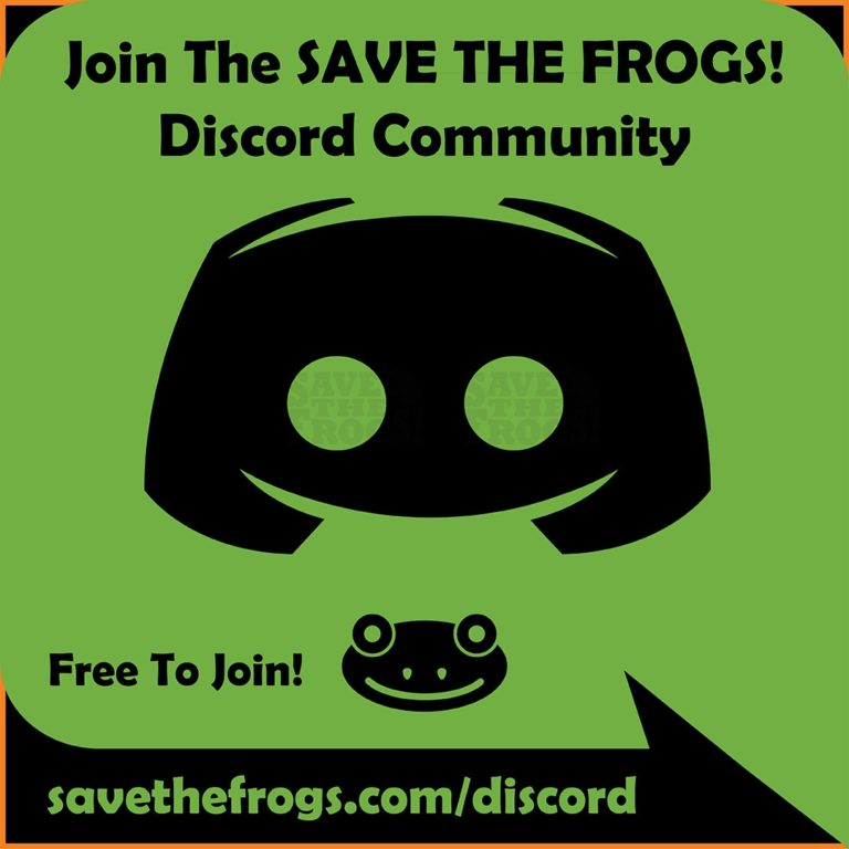 Discord Save The Frogs