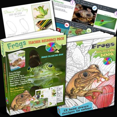 Frog Teacher Resource Pack