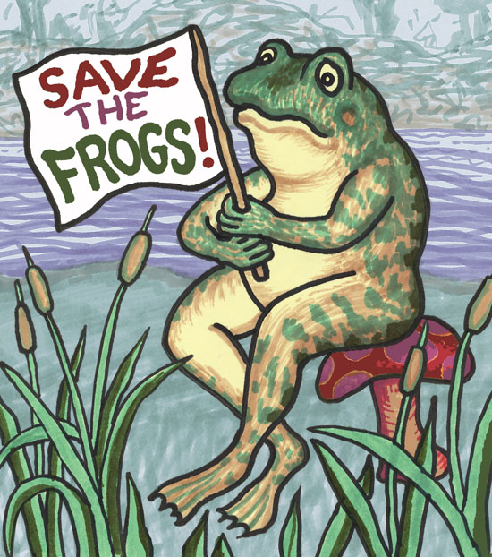 Frog Holding Flag