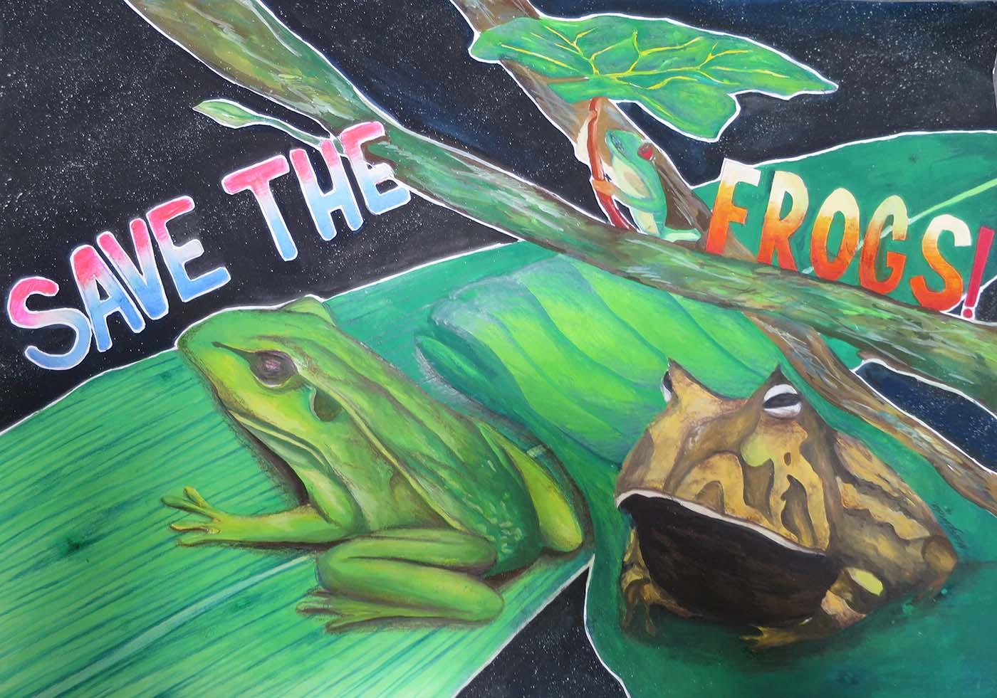Frog Art Presentations