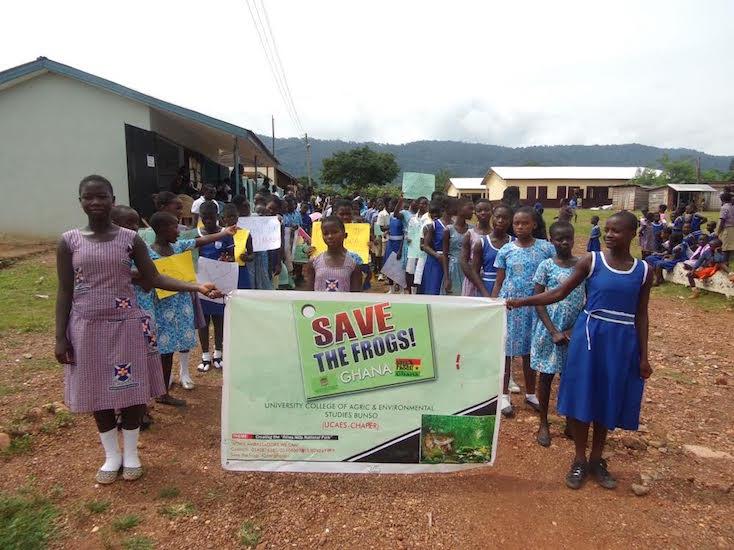 Ghana-Squeaker-Frog-Savers-2