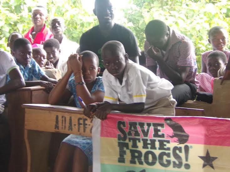 Ghana-Squeaker-Frog-Savers-4