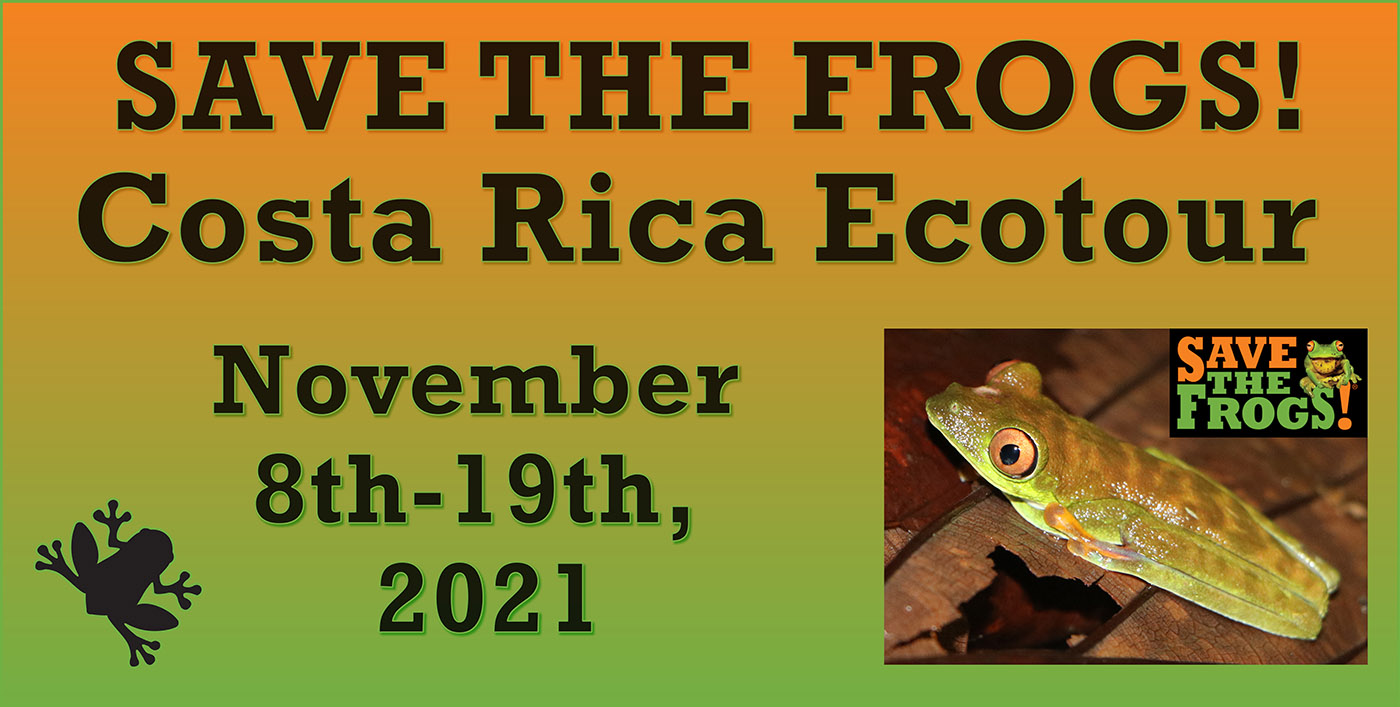Icon - 2021 Costa Rica Ecotour
