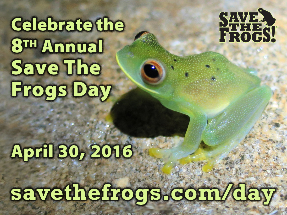 Icon Save The Frogs Day 2016 Official