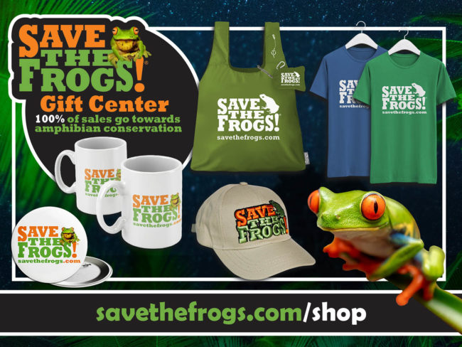 Save The Frogs Shop