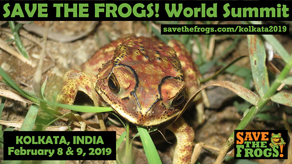 Save The Frogs World Summit Kolkata 2019