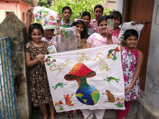 India Frogs