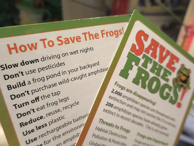 Save The Frogs Info Cards
