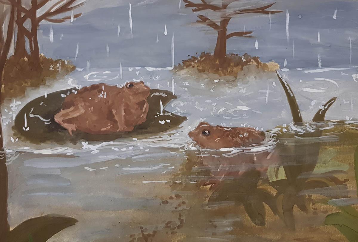 Jelizaveta -Zarkova-Estonia-2020-save-the-frogs-art-contest