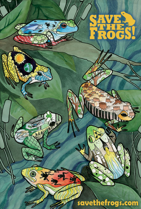 Pollution Frog Art Competition