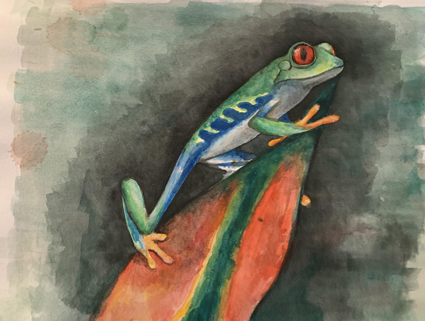 Logan-Rance-Frog-Art-Red-Eyed-Treefrog