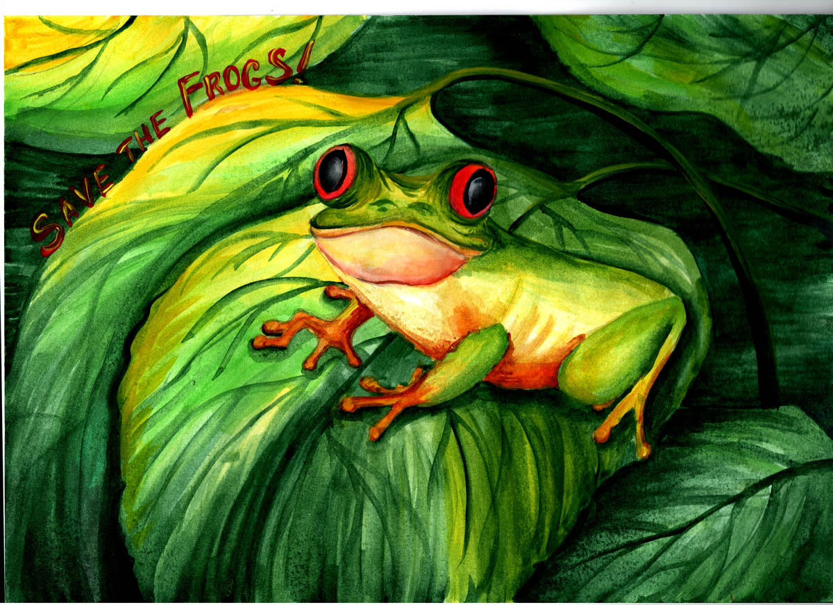 Mariya-Volkova-Ukraine -2020-save-the-frogs-art-contest