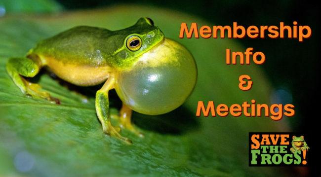 Membership Info and meetings