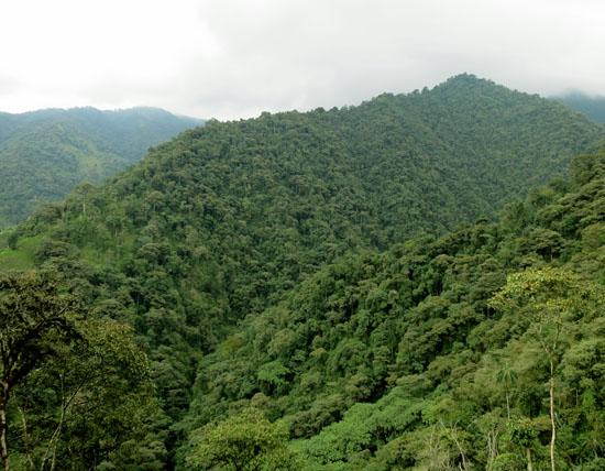 Ecuador Mindo