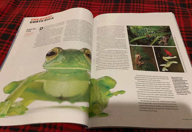National Geographic Traveler Frogs