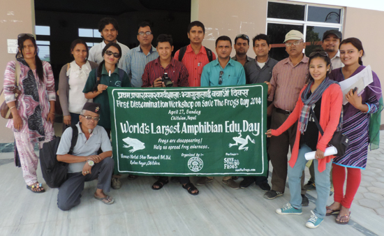 save the frogs day nepal