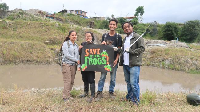 Save The Frogs Kathmandu