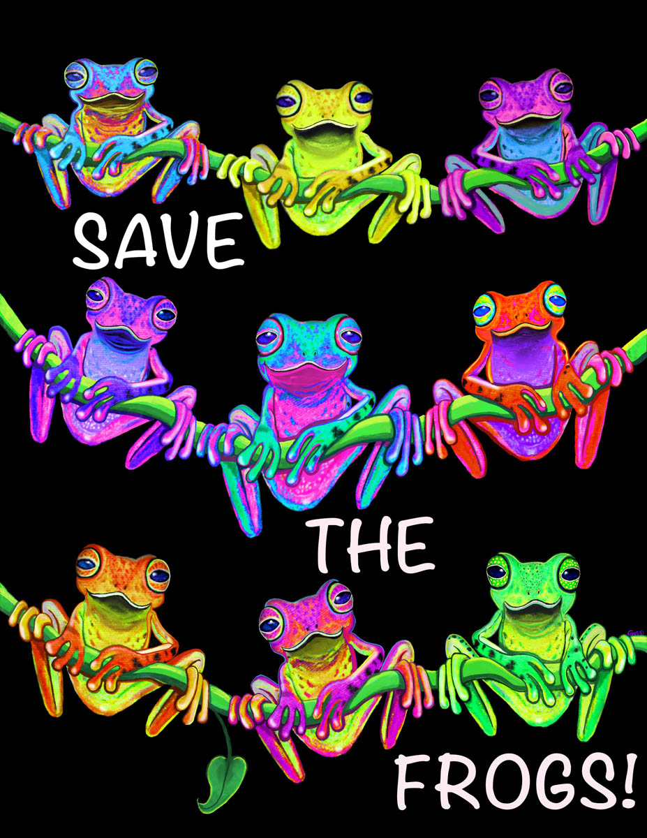 colorful frogs on vine