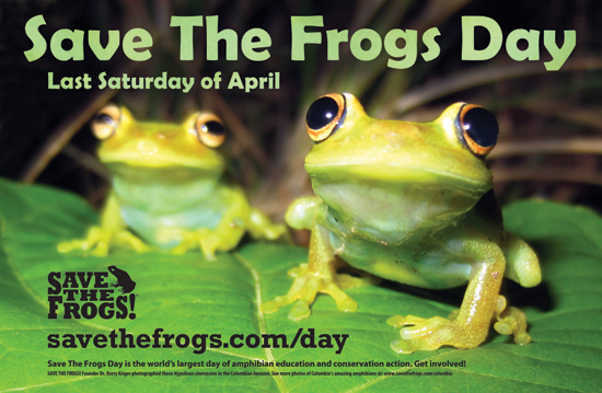 Save The Frogs Day Poster