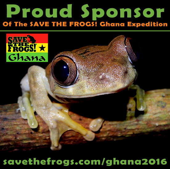 Proud Sponsor STF Ghana Expedition