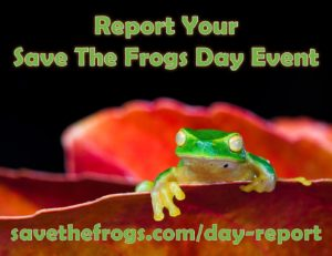 Save The Frogs Day Event Reporting