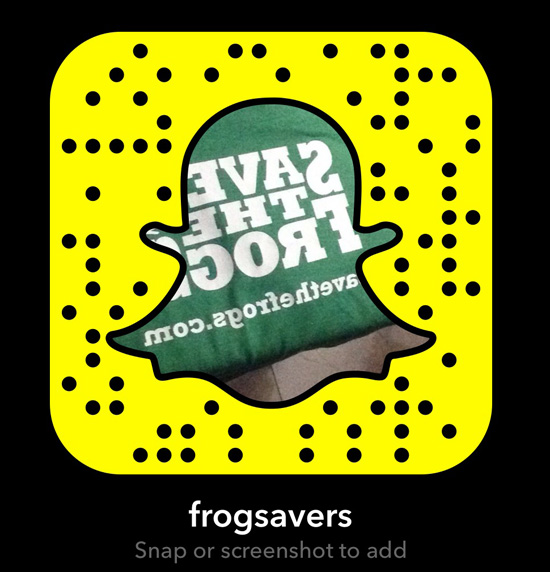 Snapchat Save The Frogs