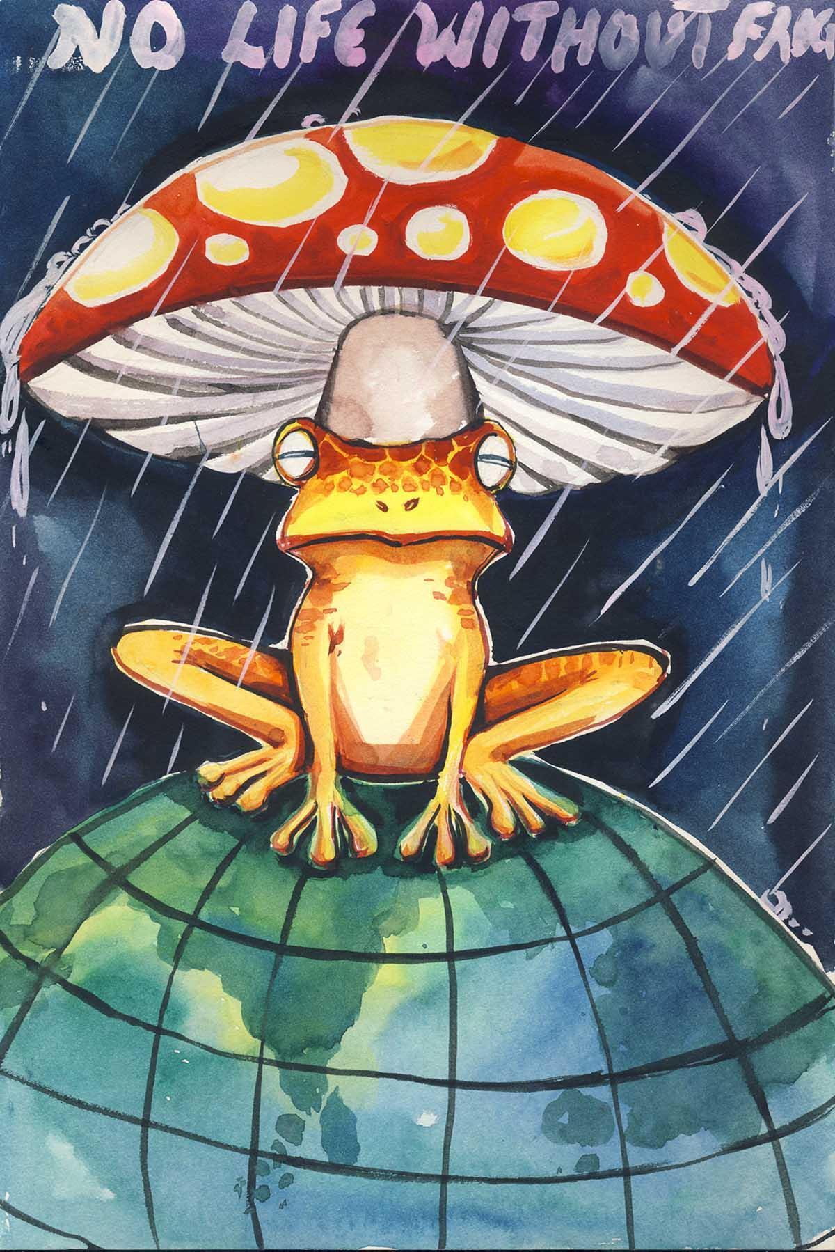 Sreehari-Ramdas-13-Mushroom-Frog-Art-1200