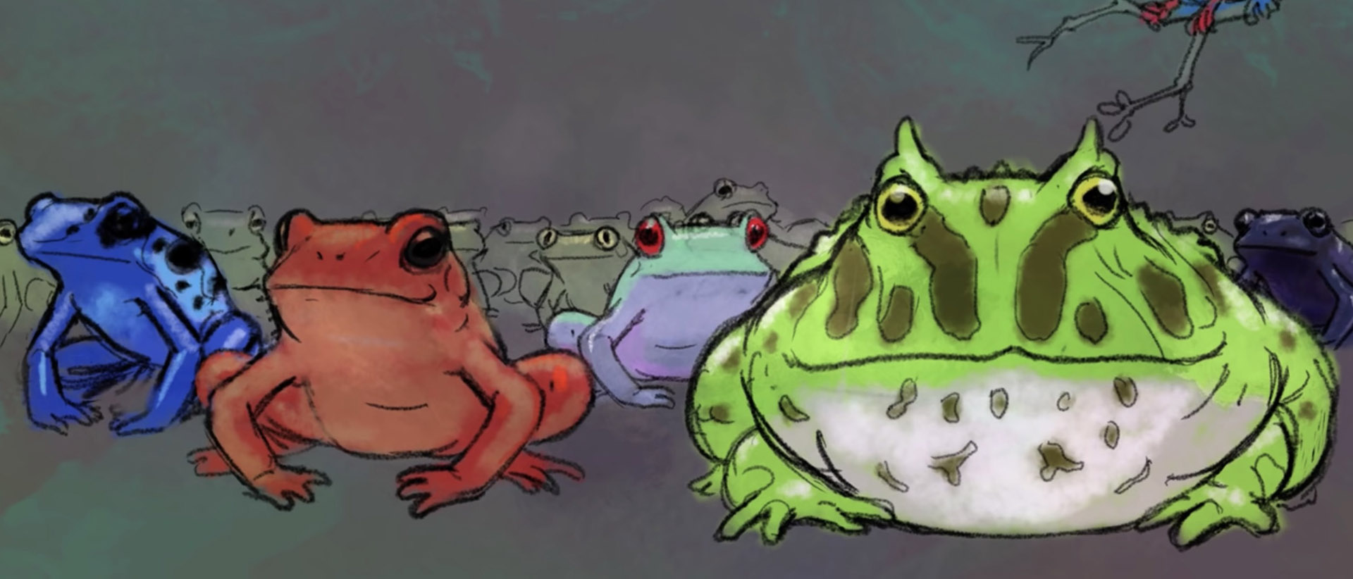 TED-Ed Disappearing Frogs