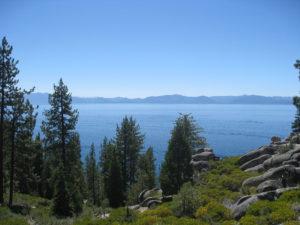 Tahoe National Forest - Wetlands Volunteer Icon