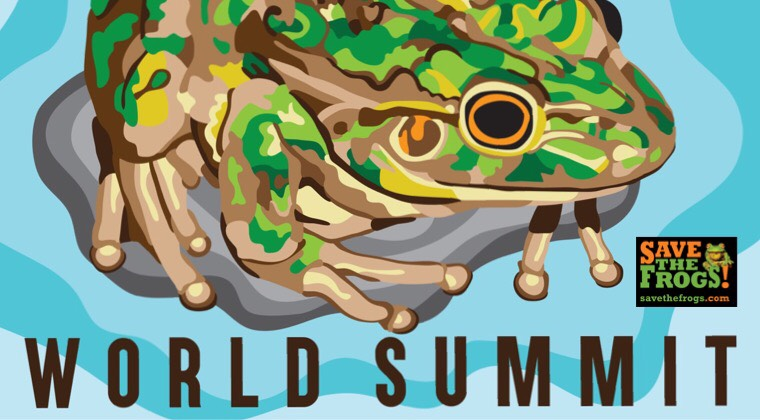 World Summit 2018