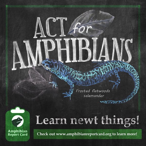 Act For Amphibians
