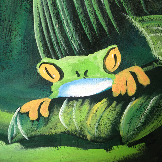 arenal frog art1
