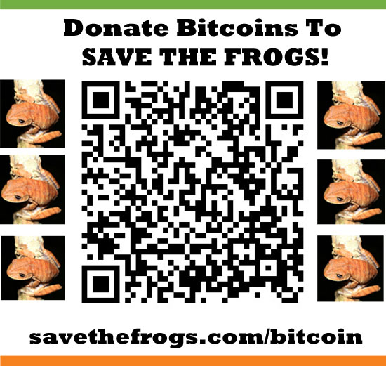 bitcoin qr code save the frogs icon