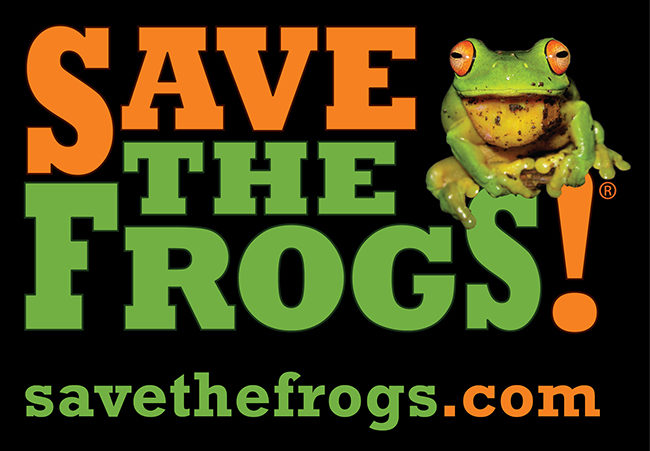 black-save-the-frogs-logo