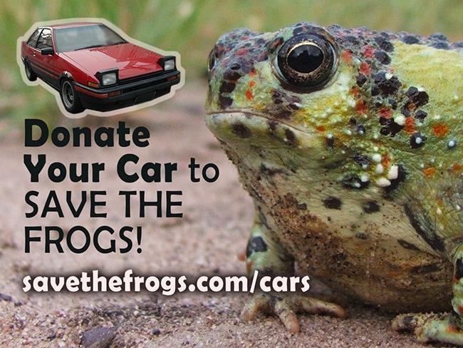 Donate Vehicle Charity