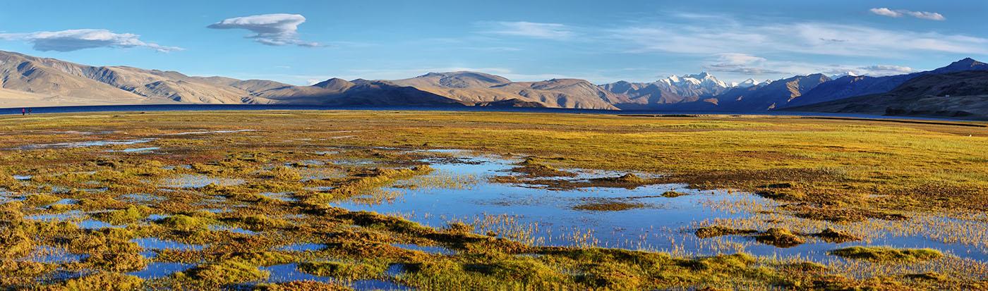 himalayan-lake-tso-moriri-korzok