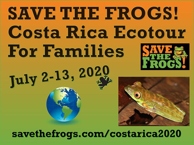 Costa Rica Ecotour Families 2020